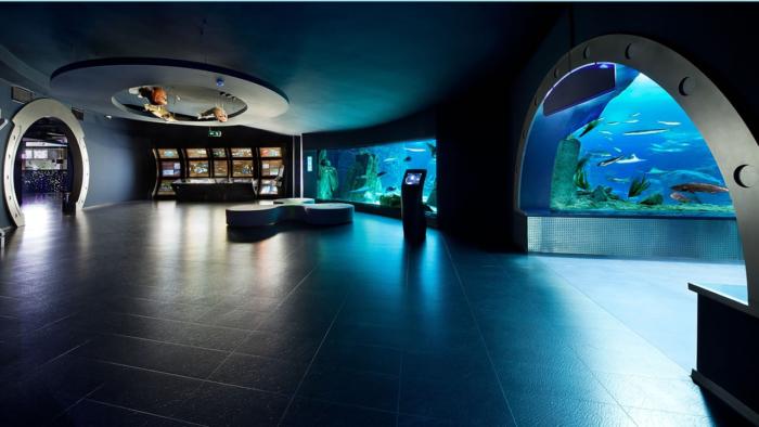 Просторные павильоны с аквариумами