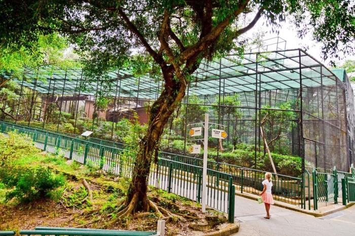 Вольеры с животными в зоопарке Гонконга