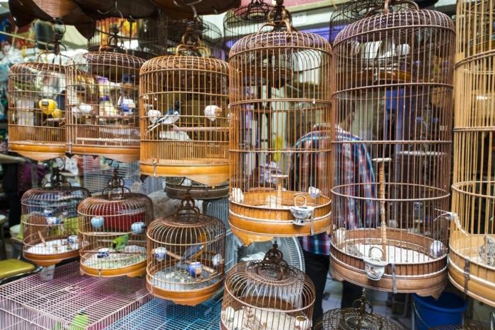 Птицы в клетках на гонконгском рынке