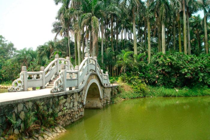 Мост и пруд в ботаническом саду Китая