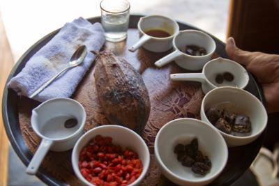 Дегустация шоколада на Uforia Chocolate Factory в Чандидаса