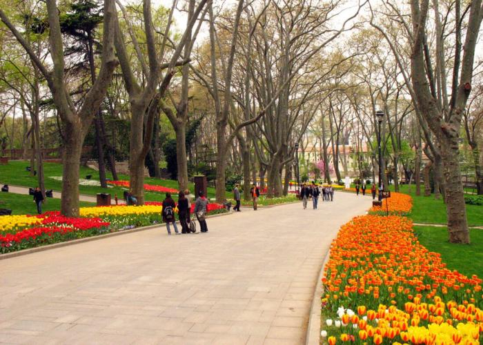 Центральная аллея с прогуливающимися туристами
