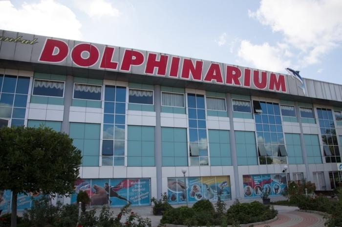Вход в дельфинарий (Стамбул, Турция)